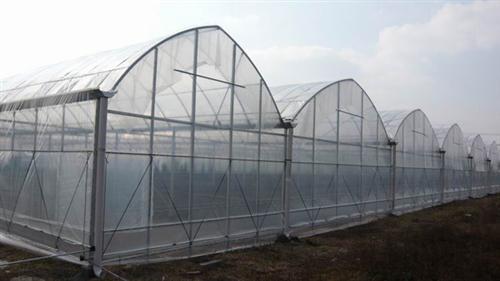 连体温室大棚骨架价位-精良的罗贵园艺供应