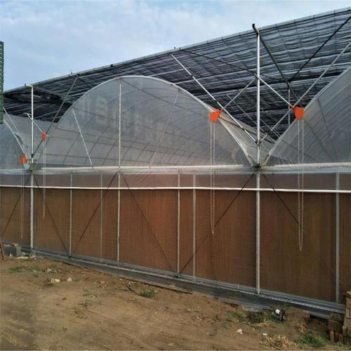 实惠的连体温室大棚骨架-罗贵园艺建造找哪家
