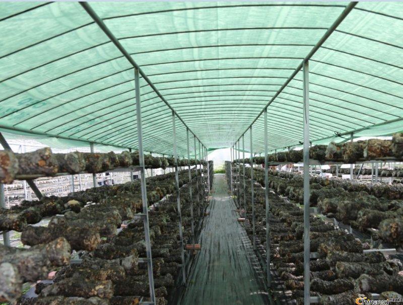 定制大棚遮光膜 哪里能買到好的羅貴園藝