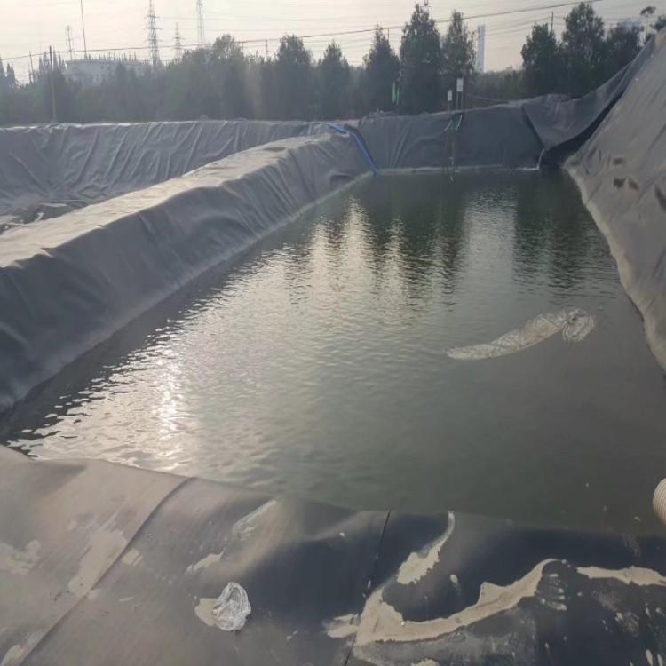 江苏特制水产养殖防渗土工膜-具有实力的罗贵园艺供应商推荐