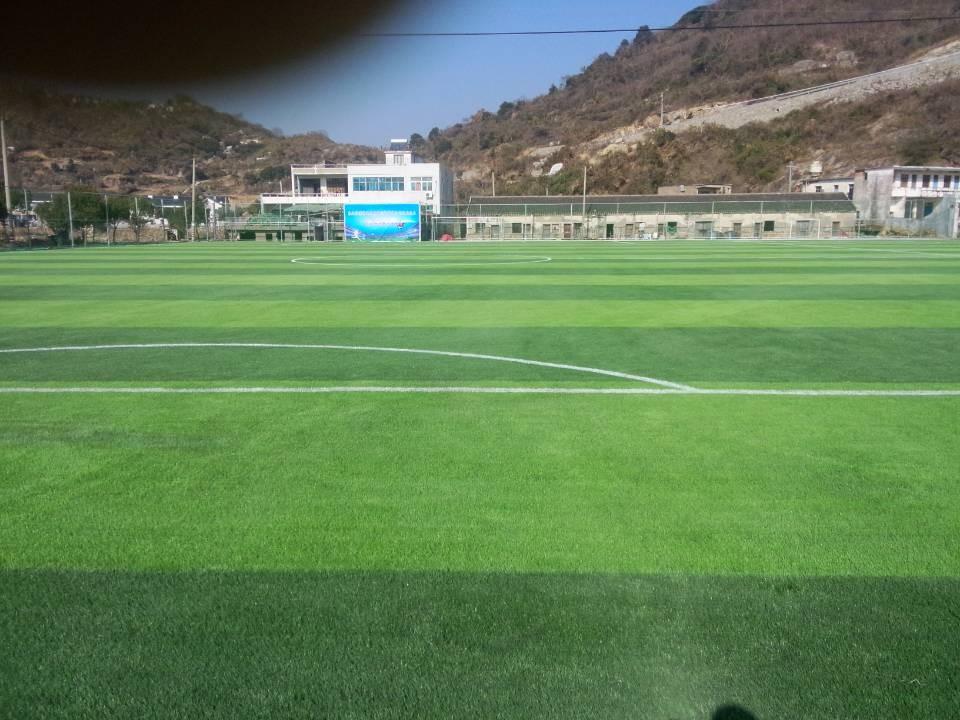 足球场人造草价格_可信赖的足球场厂