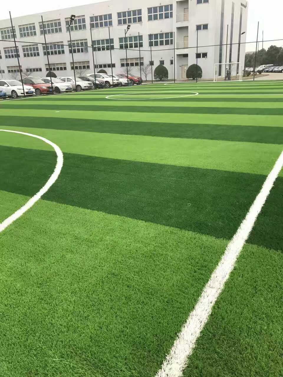 足球场草坪建设-宁波哪里有供应款式新的足球场
