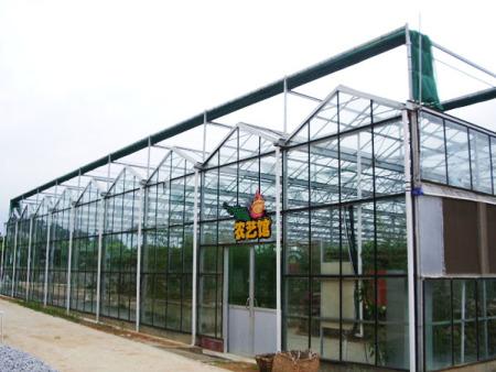 阳光板玻璃温室价格-潍坊温室大棚造价怎样