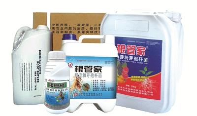 生根肥生产厂家-哪里有提供品质高的生根肥