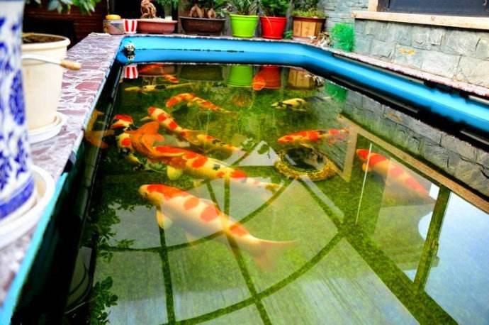 甲天下家庭鱼池水浑浊处理_给你一个舒适的环境|海淀庭院假山鱼池水浑浊、水发臭处理