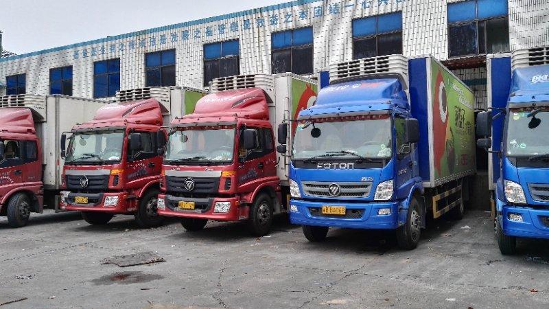 冷藏运输-可信赖的广东省内冷链物流推荐