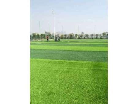锦州人造草坪|供应辽宁口碑好的人造草坪