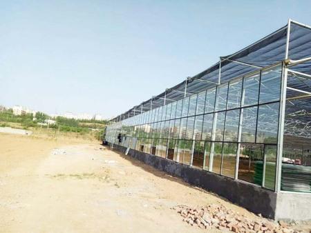 山東玻璃溫室-濰坊玻璃溫室廠家