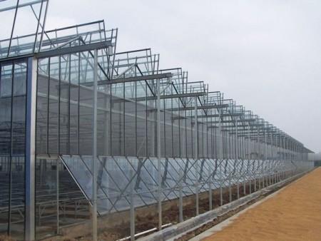光伏大棚-光伏大棚建造找鑫隆溫室工程