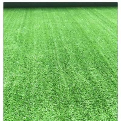人造草坪网厂家_内蒙古优惠的呼市仿真草坪网供销