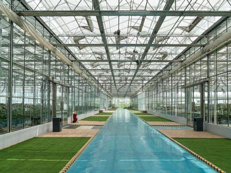 智能玻璃温室报价,智能玻璃温室建设,智能玻璃温室