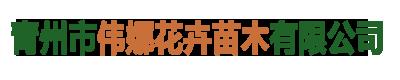青州市偉娜花卉苗木有限公司