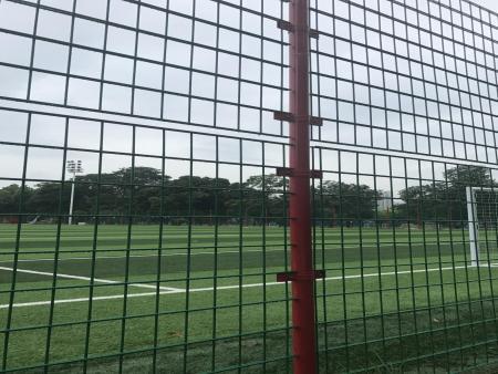惠州球场围网-惠州知名的球场围网供应商