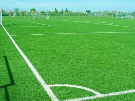 惠州人造草皮,人工草坪-惠州市富兴达体育设施有限公司