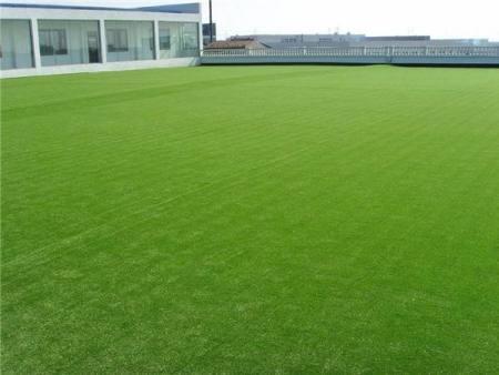 惠阳室内人工草坪-上哪买质量好的人造草坪