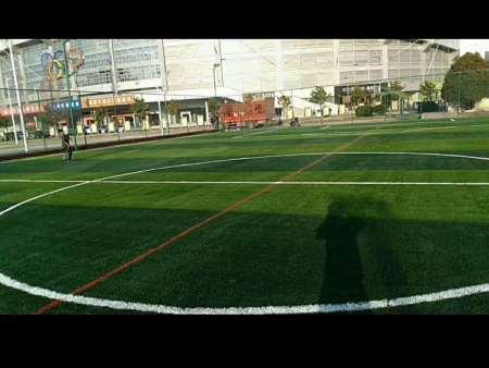 足球場人造草皮廠家-銷量好的人造草坪出售