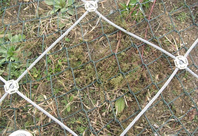 甘肃边坡防护网 信誉好的专业的生产厂家 甘肃边坡防护网