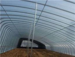 白银黑色地膜生产厂家-天水热卖安阳农膜提供商