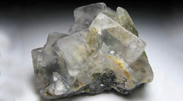 呼和浩特动物矿物�标本-哪家有供应ㄨ矿物标本