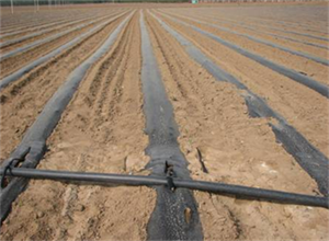 农业节水灌溉技术-泽润节水划算的农业节水喷灌设备出售