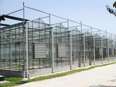 玻璃温室工程//玻璃温室建造