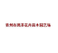 青州市鸿泽花卉苗木园艺场