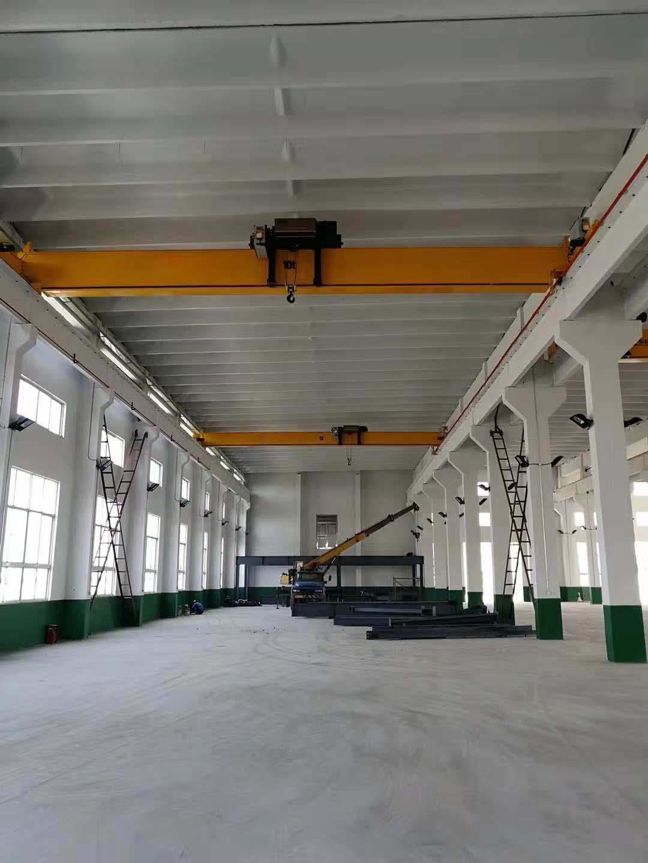 绥化环链电动葫芦-规模大的黑龙江起重机生产商