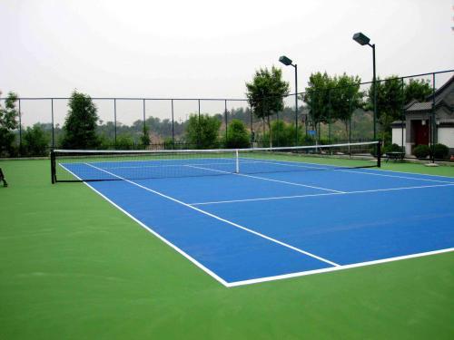 品牌硅PU球場專業供應|廣州硅PU排球場施工