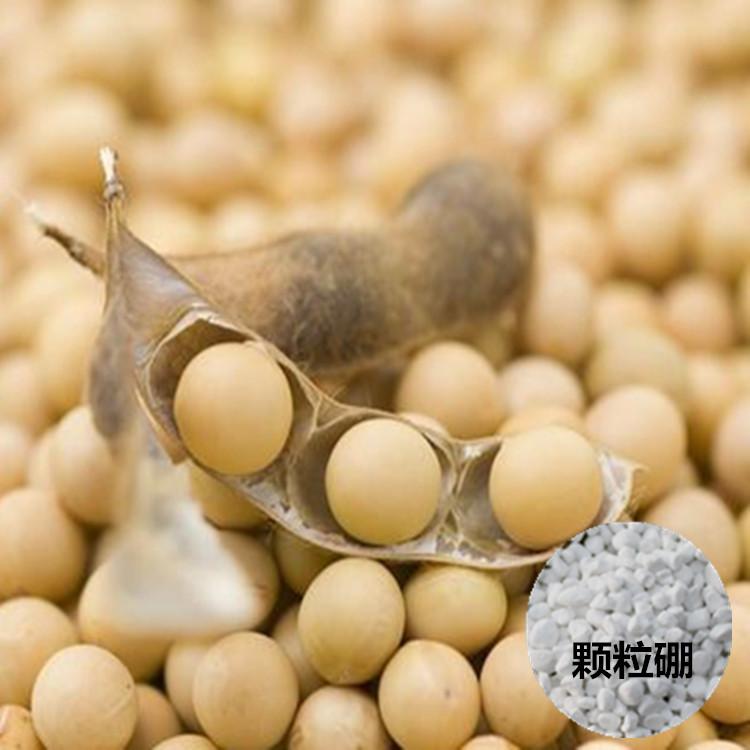 大豆专用颗粒硼@全水溶硼肥&硼肥预防作物华而不实