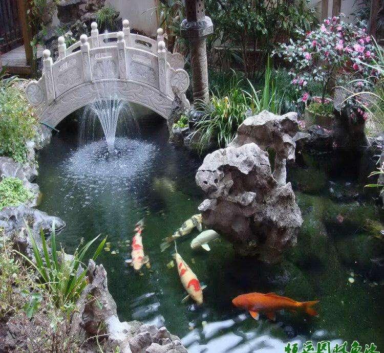别墅鱼池水净化处理专业提供-黄浦假山鱼池过滤