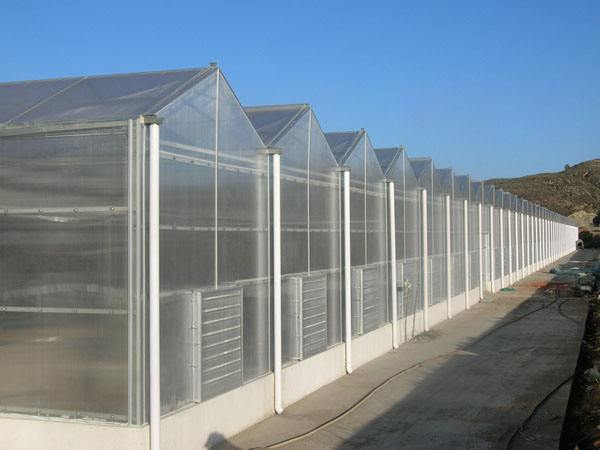 阳光板温室//阳光板温室建造