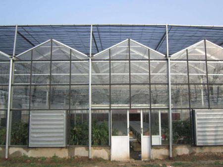 玻璃温室//玻璃温室建造