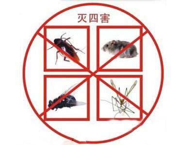 除四害,白蚁防治,杀虫灭鼠