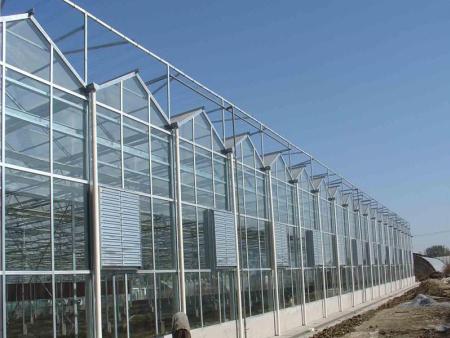 智能温室大棚建设/智能温室大棚承建