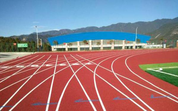 哈尔滨塑胶跑道-买塑胶跑道就来万辉体育