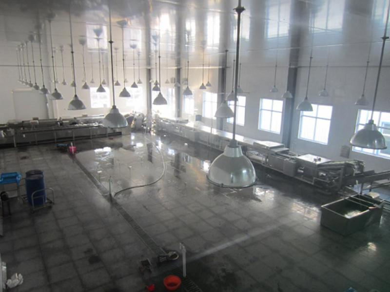 西藏果蔬加工流水线供应商_山东耐用的果蔬加工流水线设备