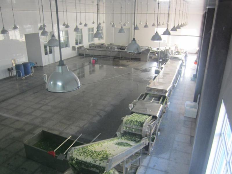 果蔬加工流水线厂家直销-为您推荐超值的果蔬加工流水线设备