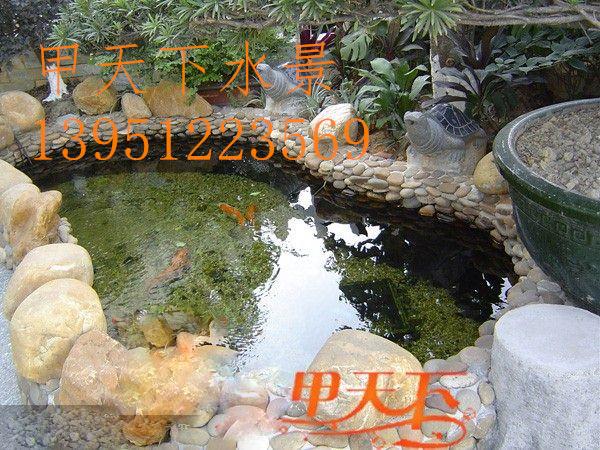 盐城市景观别墅鱼池水净化。养鱼解决水质问题澄江县景湖别墅图片