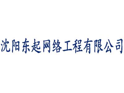 沈陽東起網絡工程有限公司