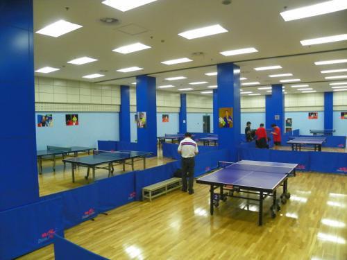 福建乒乓球台吊灯 乒乓球馆专用照明灯具_怎么选择质量有保障的乒乓球台吊灯