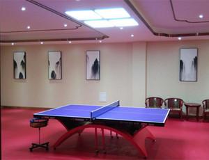 台湾乒乓球台吊灯 乒乓球馆专用照明灯具,哪里可以买到信誉好的乒乓球台吊灯