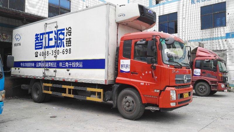湛江冷藏物流|哪里有可靠的广东省内冷链运输