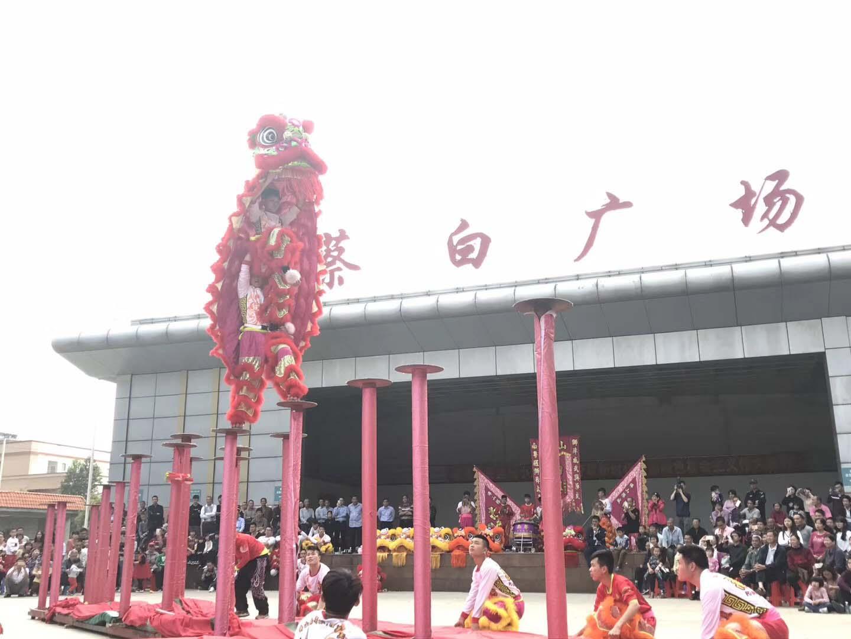 广东醒狮庆典活动开业庆典龙狮表演
