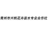 青州市兴凯花卉苗木专业合作社