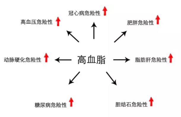 有效的减肥方法朴束-广州服务周到的瘦身费用价格