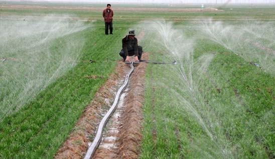 滴灌管價格-山東節水灌溉供應
