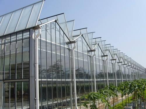 玻璃大棚   哪里建设玻璃大棚好