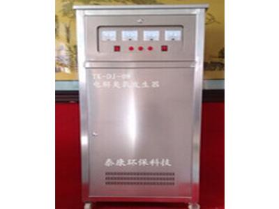 智能中央空调专用电解臭氧发生器