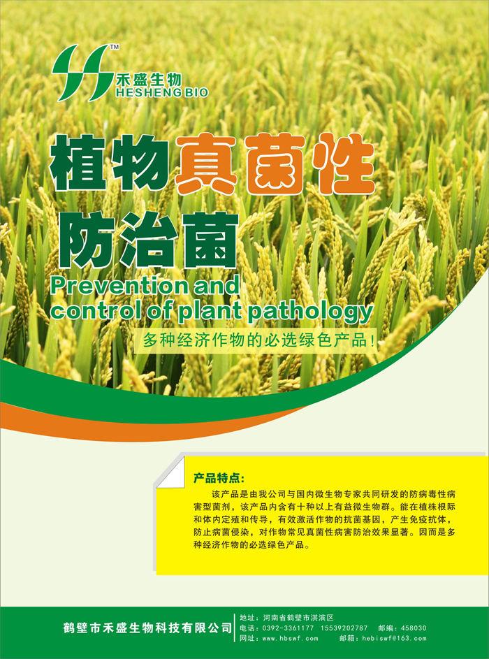 有机肥菌剂价格范围-植物真菌性防治菌-高产量