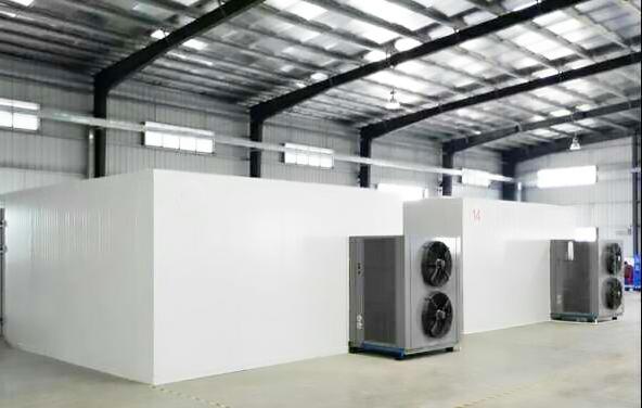 郑州好的薄荷叶烘干机   百信优质空气能热泵薄荷叶烘干设备